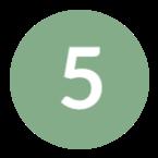 icon-5-green